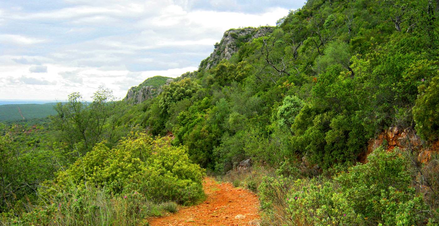 rocha-da-pena-trail-copy