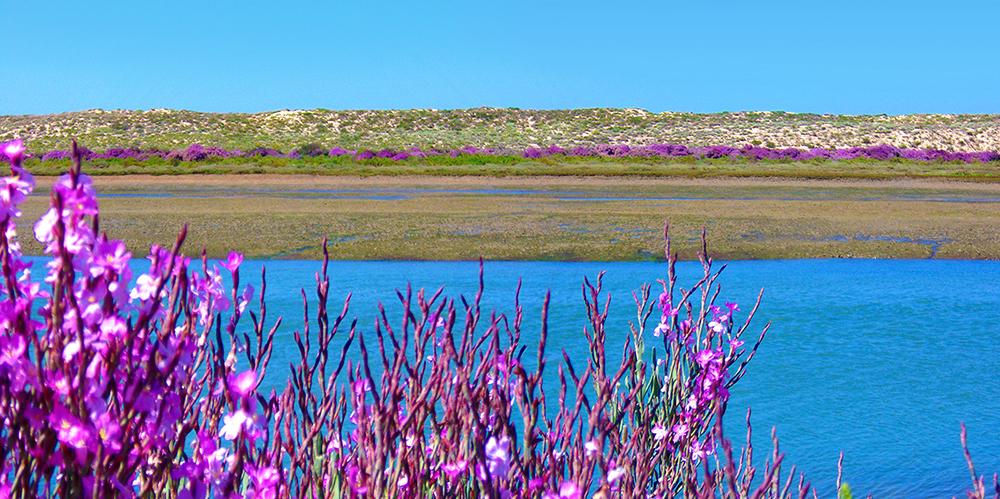 Ancão-Peninsula-Hidden-Beaches-Algarve